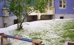 5 лет назад в Могилеве летом выпал снег