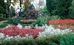 Ботанический сад БГСХА в Горках готовится стать национальным достоянием